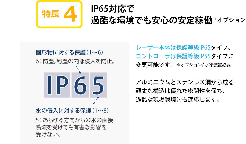 LP_dominoD01_05
