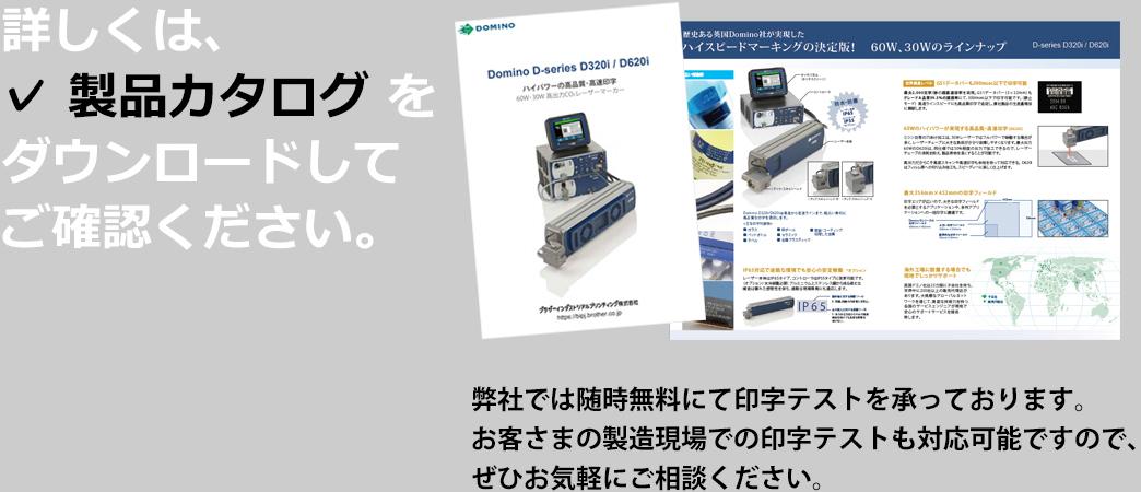 LP_dominoD01_08